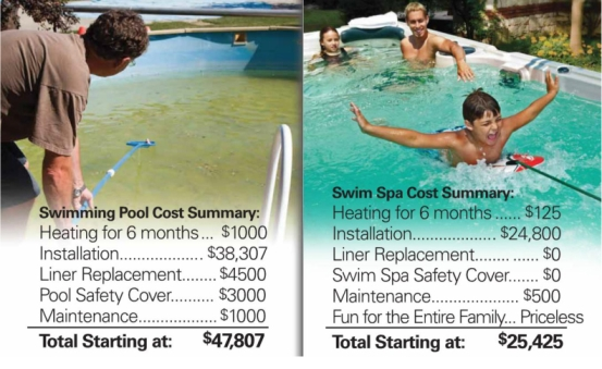 pool vs swim spa